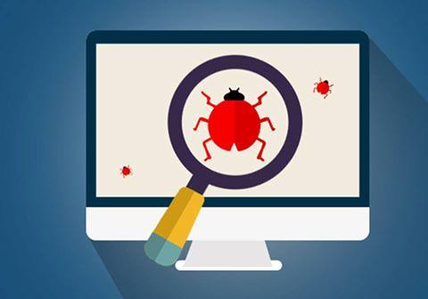 softwarebug